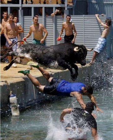 Бег от быков [25 фото]