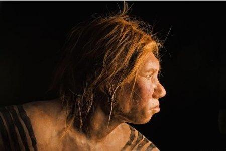 Женщина неандерталец [9 фото]