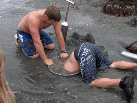 Самый огромный моллюск в мире [6 фото]