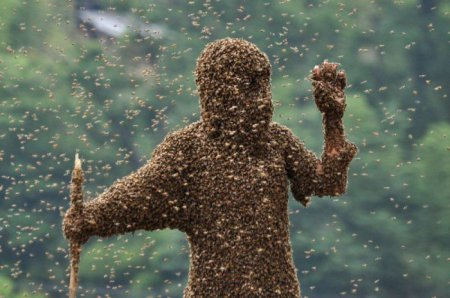 Китаец удержал на своем теле 26 килограммов пчел