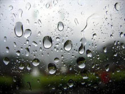 Петричор – запах после дождя